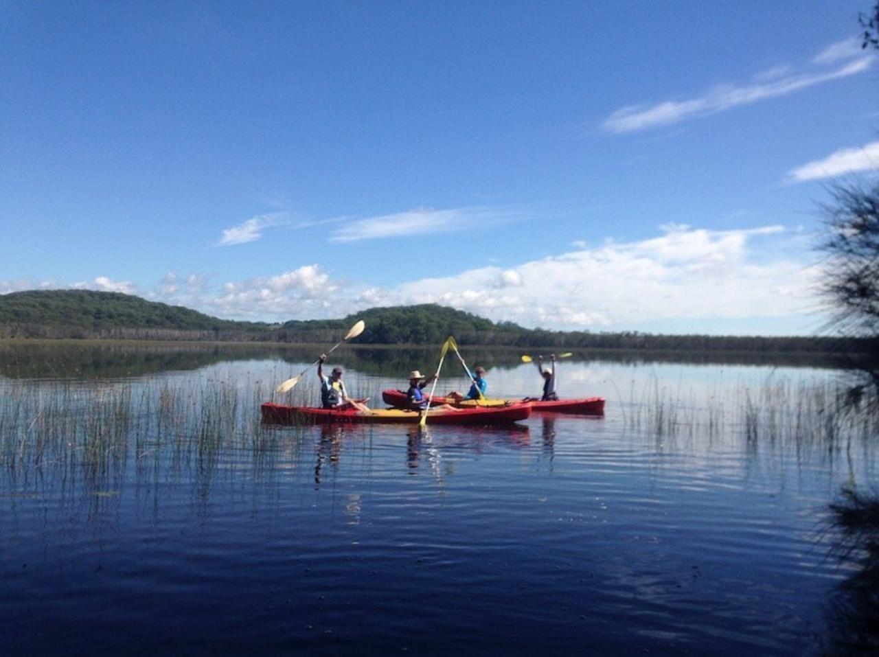 Tweed Coast Kayaking Tour